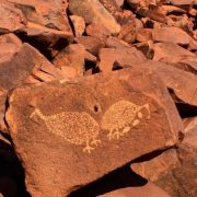 aboriginal-rock-art-day-trip-with-indigenous-guide-from-karratha-in-karratha-267161.jpg